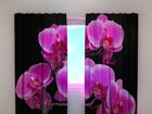 Затемняющая штора Orchid twig 240x220 cm ED-100455