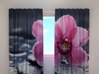Затемняющая штора Orchid tenderness 240x220 cm ED-100464