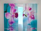 Полузатемняющая штора Skyblue orchids 240x220 cm ED-100478