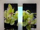 Затемняющая штора Citreous orchids 240x220 cm ED-100492
