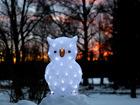 Акриловая фигура Owl 43 cm AA-101102