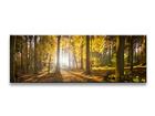 Картина Wald 120x40 cm ED-104982