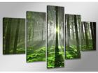 Картина из 5-частей Forrest 200x100 cm ED-107317