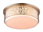 Потолочный светильник Venera EW-107379