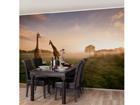 Флизелиновые фотообои Surreal Giraffe 190x288 cm ED-112182