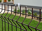 Заборная панель 3D RAL8017, 4 mm 153x250 cm PO-116460