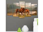 Картина из 5-частей Horse IV, 100x60 cm ED-116578