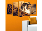 Картина из 5-частей Cats III, 100x60 cm ED-116693