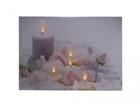 LED настенная картина Candles & Rose Blossom 30x40 см