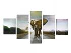 Картина из 5-частей Elephant I 160x80 cm ED-117473