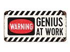 Металлический постер в ретро-стиле Genius at Work 10x20 cm SG-118303