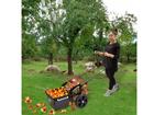 Собиратель яблок ручной FOS 25 CE-118560