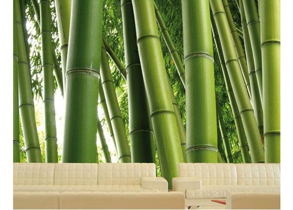 Фотообои Paradise of Bamboo 400x280 cm ED-123849