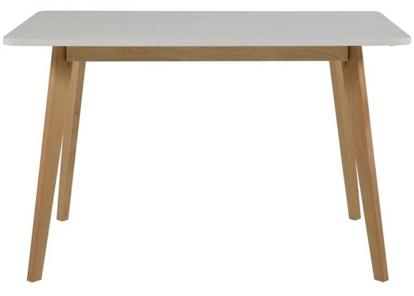 Обеденный стол Raven 120x80 cm CM-124165