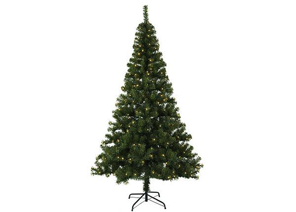 Искусственная елка Ottawa LED 210 cm AA-124956