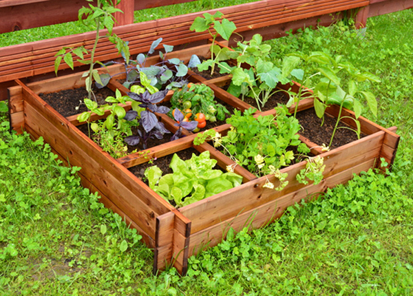 Ящик для выращивания растений 100x100 см, 9 секторов
