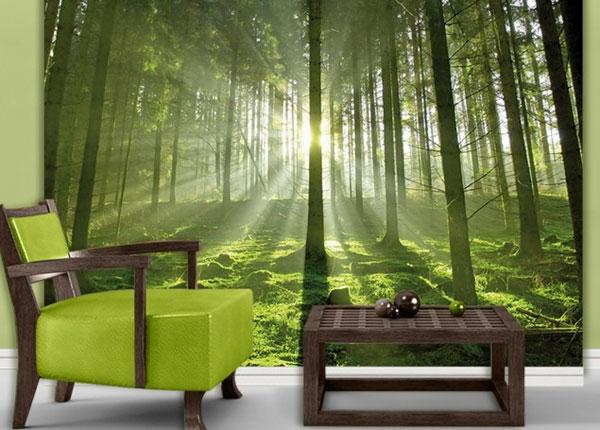 Фотообои Forest 280x200 cm ED-125963