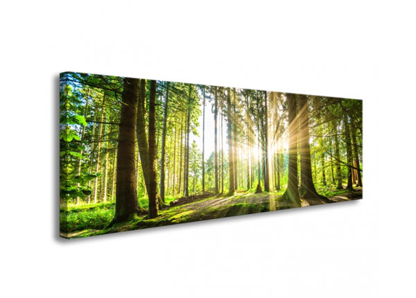 Картина Forest in backlight 120x40 cm ED-126285