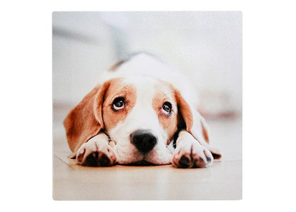 Настенная картина Собака ET-126566