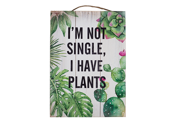 Деревянная картина I`m not single, I have plants 25x35 cm EV-128192