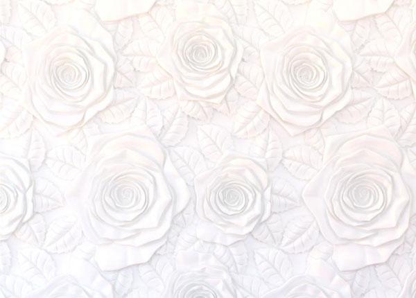 Флизелиновые фотообои Flowers 3D, 360x270 cm ED-128213