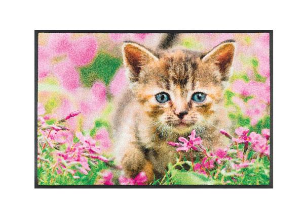 Ковер Kitty