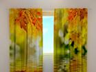 Просвечивающая штора Golden leaves 240x220 cm ED-128618