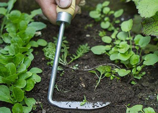 Ножик для полки Bamboo PR-129952