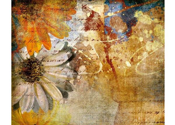 Флизелиновые фотообои Vintage flowers 360x270 cm ED-132624