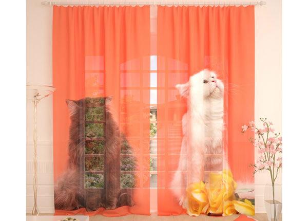 Тюлевые занавески Cats 290x260 cm AÄ-134083