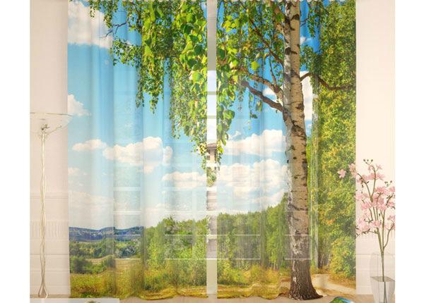 Тюлевые занавески Birch 290x260 cm AÄ-134089
