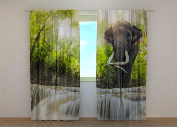 Затемняющая штора Big Elephant 240x220 см ED-134187