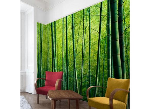 Флизелиновые фотообои Bamboo Forest