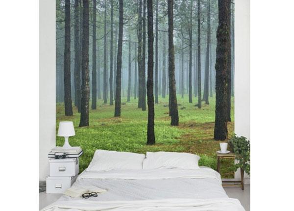 Флизелиновые фотообои Deep forest with pines on La Palma