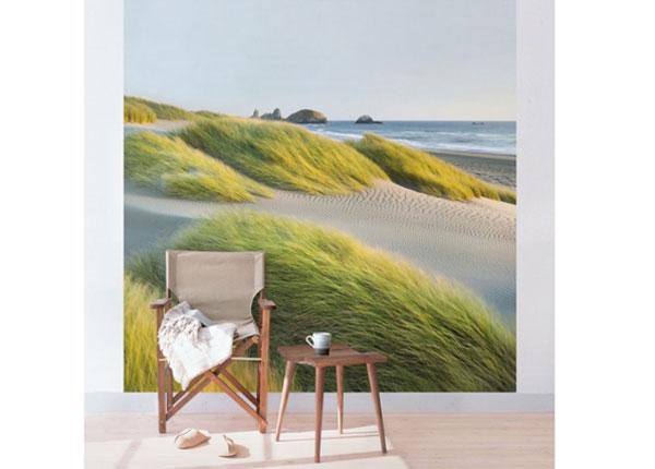 Флизелиновые фотообои Dunes and grasses at the sea