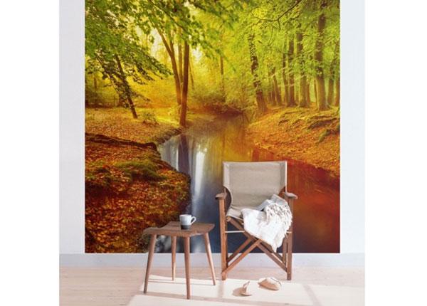 Флизелиновые фотообои Autumn Forest