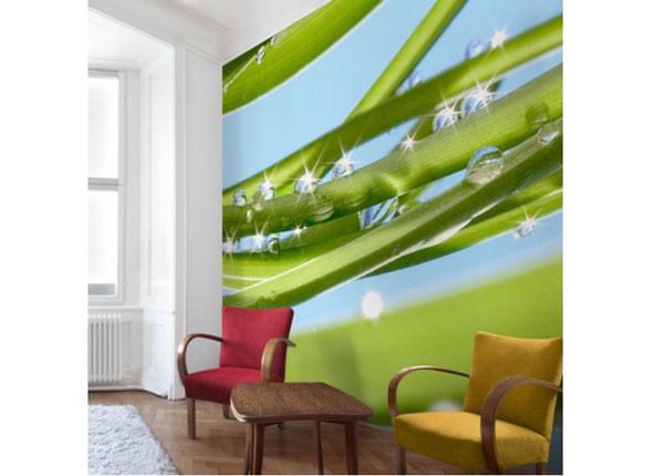 Флизелиновые фотообои Fresh Green