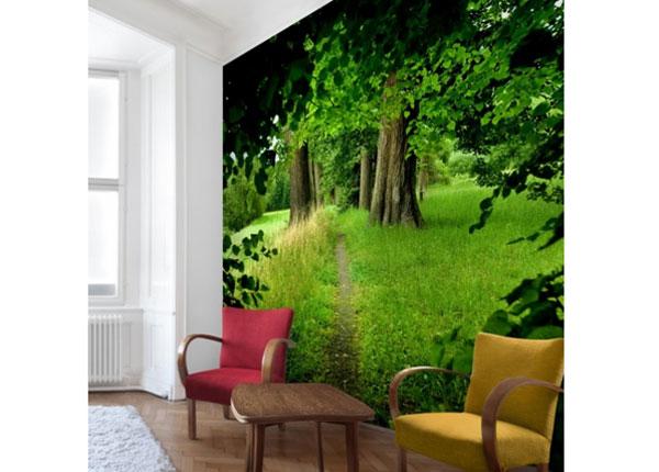 Флизелиновые фотообои Hidden Glade