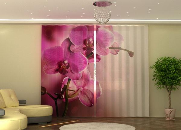 Полузатемняющая штора Purple Orchid ED-135549