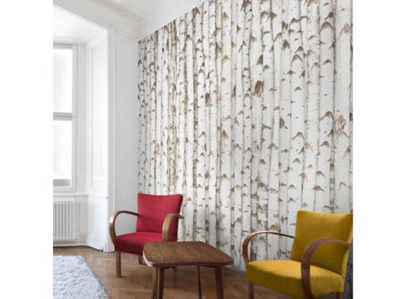 Флизелиновые фотообои Birch wall