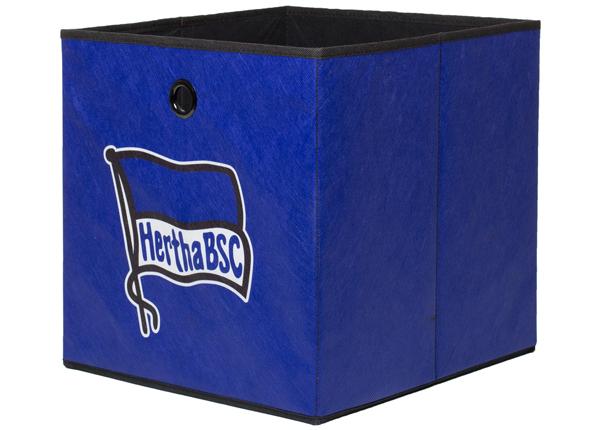 Ящик Hertha BSC CM-136243