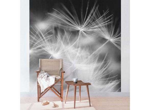 Флизелиновые фотообои Moving Dandelions close up on black background