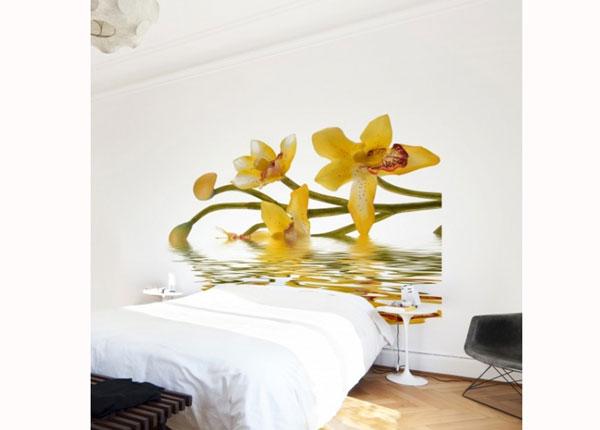 Флизелиновые фотообои Saffron Orchid Waters