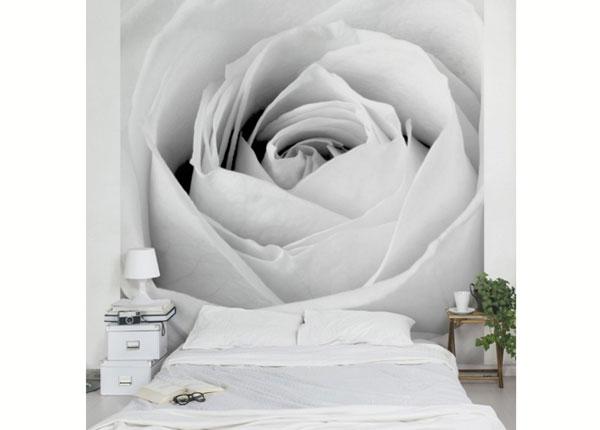 Флизелиновые фотообои Close Up Rose