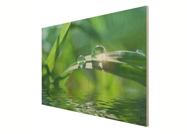Картина на древесине Green Ambiance II ED-137812