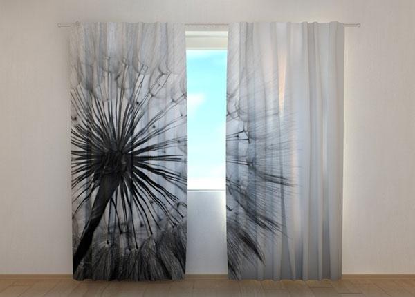 Полузатемняющая штора Amazing Dandelion Black and White ED-137835