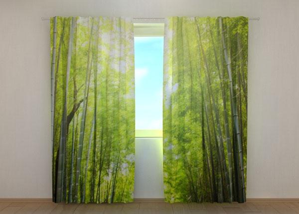 Полузатемняющая штора Bamboo Forest at Sunset ED-137839