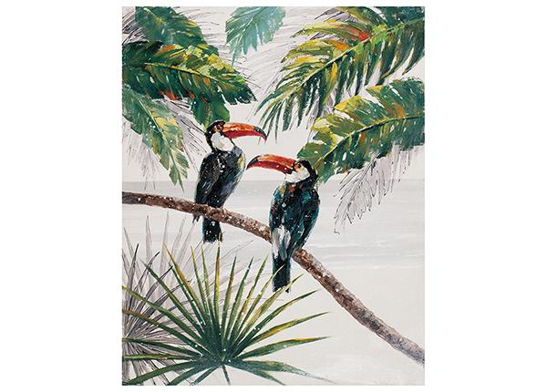 Масляная картина Тропические птицы 80x100 cm EV-139482