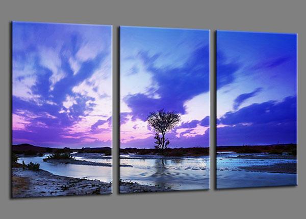 Картина из 3-частей Natur 160x90 cm ED-139940