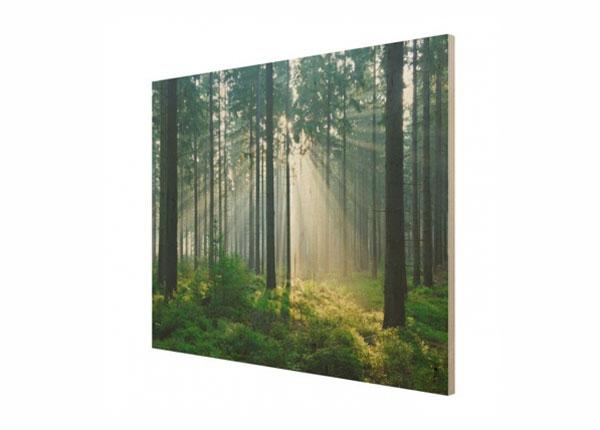 Настенная картина на древесине Enlightened Forest